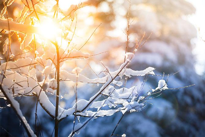 winter-weather-preparedness-guide